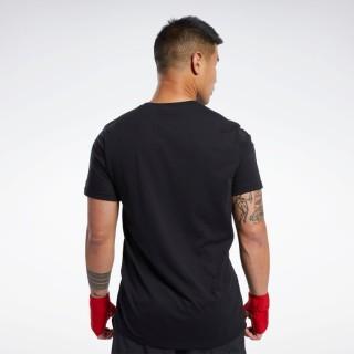 Combat Boxing